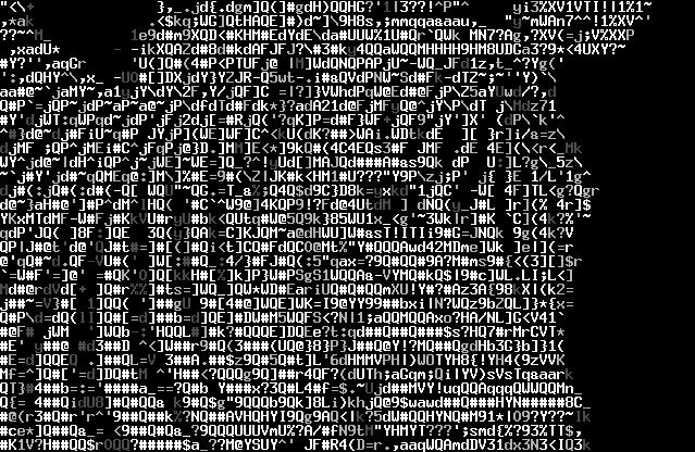 imagen3_cebra